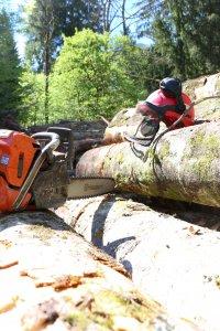 Image page contact Echoforêt, casque et tronçonneuse sur bois